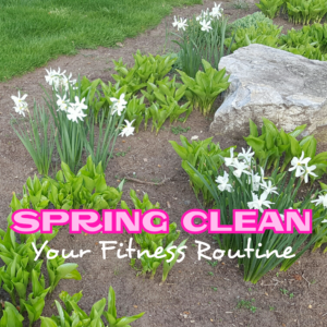 SPRING CLEAN YOUR FITNESS ROUTINE - followPhyllis