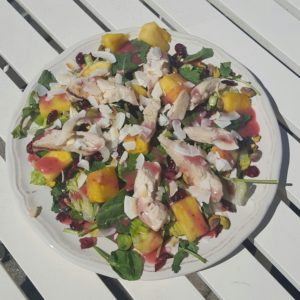 follow-phyllis-tropical coconut chicken salad